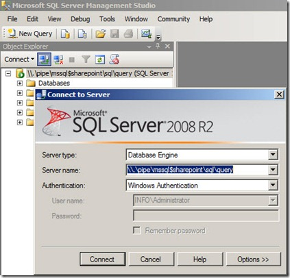 sql sharepoint thumb Как подключиться к базе SharePoint 2010 Foundation (standalone)
