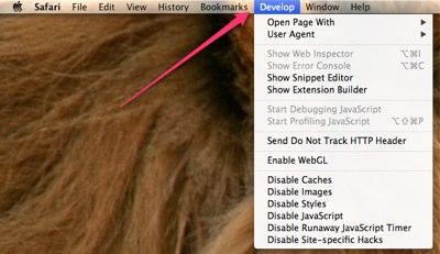 develop menu safari 2 Как активировать меню разработчика в Safari