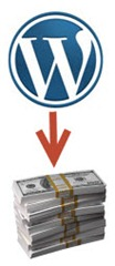 wp cash thumb Монетизация блога. Google Adsense – первые доллары