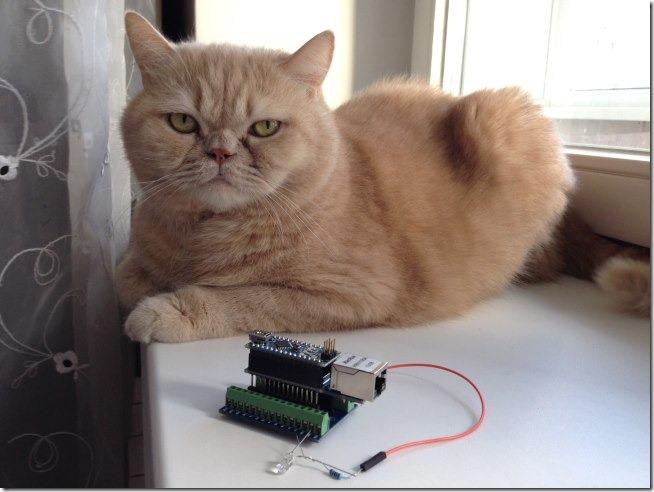 arduino nano driver win macos 1 thumb Не ставятся драйвера на Arduino Nano